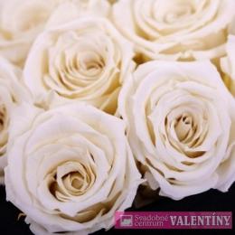 Kvety biele
