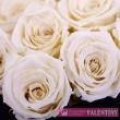 Svadobná kytica z ruží živá NOVINKA